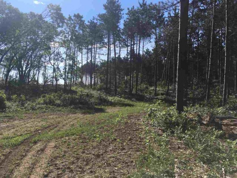 140 AC 8th Ave, Wisconsin Dells, WI by Cold Water Realty, Llc $553,000