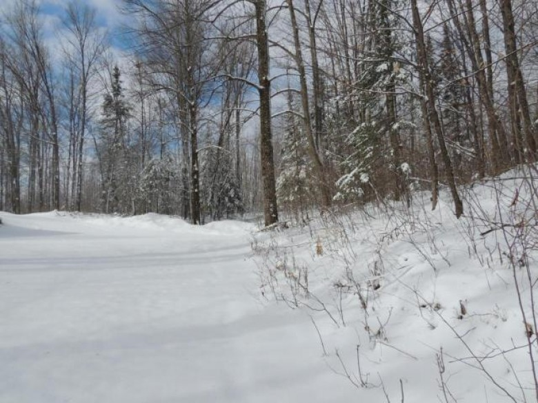 W8687 Hwy 47, Norwood, WI by Absolute Realtors Inc. $134,900