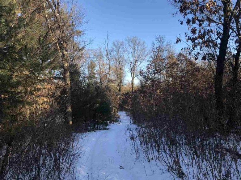40 AC 10th Ave, Adams, WI by Whitetail Dreams Real Estate Llc $114,000