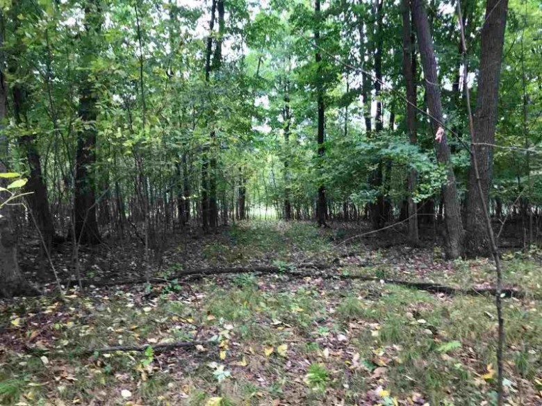 Oak View Drive, Shawano, WI by Full House Realty, LLC $45,000