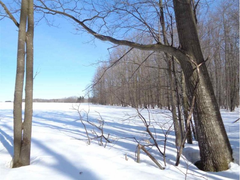 243503 Bungaloo Road, Athens, WI by Dixon Greiner Realty, Llc $285,000