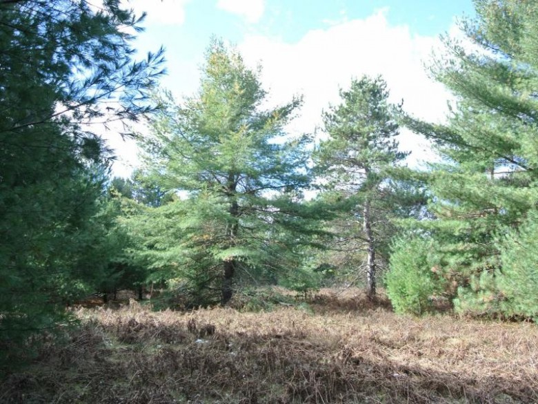 LOT 6 Eagle Flight Tr, Lincoln, WI by Redman Realty Group, Llc $59,900