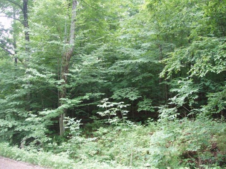 ON Hickory Ridge Tr, Meteor, WI by Birchland Realty, Inc - Park Falls $9,900