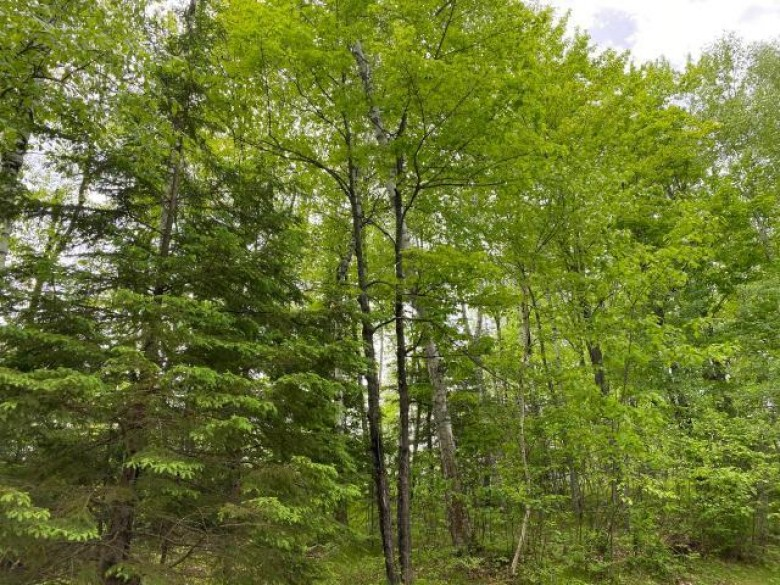 W1760 Harrison Flowage Rd, Harrison, WI by Re/Max Property Pros - Tomahawk $250,000