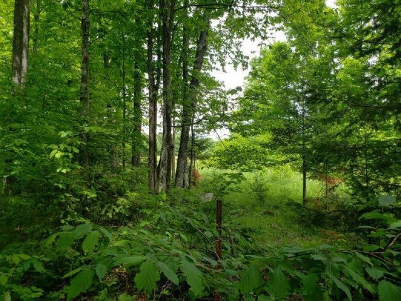 34 ACRES Railroad Ave N, Lincoln, WI by Century 21 Northwoods Team $48,500