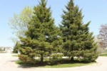 3196 W Ryegrass Drive, Appleton, WI by Century 21 Ace Realty $35,900