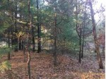 173 Lake Shore Dr Lake Delton, WI 53965 by Cold Water Realty, Llc $65,000