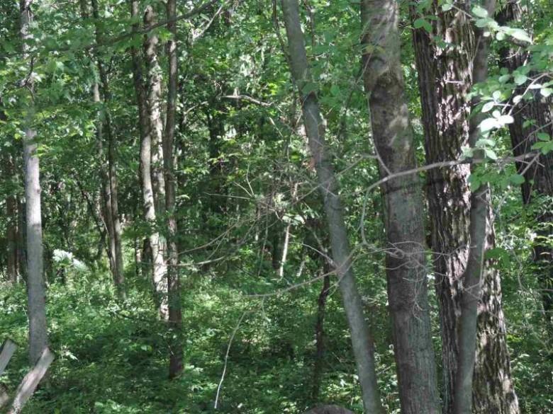 LOT 42 Wildwood Way, Poynette, WI by Re/Max Preferred $79,000