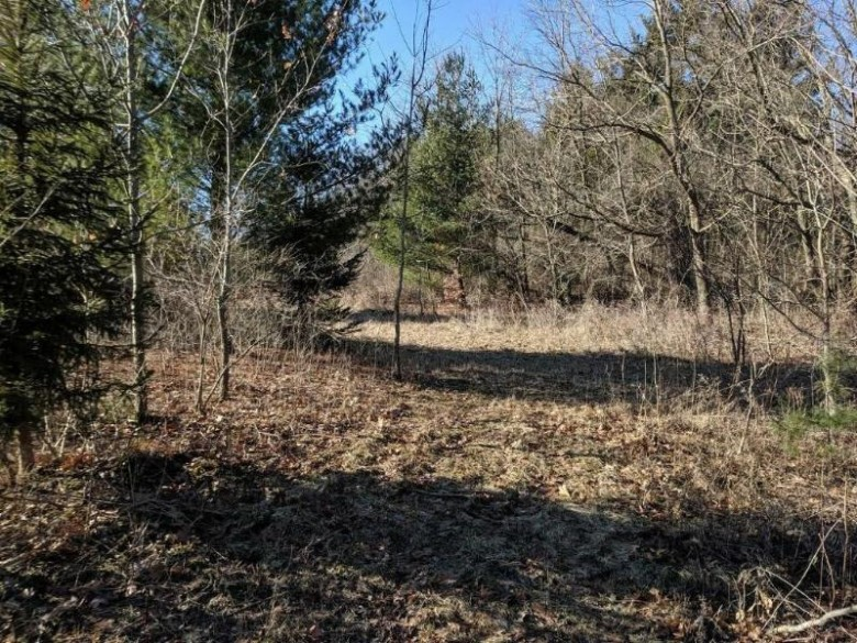 LT3 Hickory Ln, Lake Geneva, WI by Keefe Real Estate, Inc. $129,900