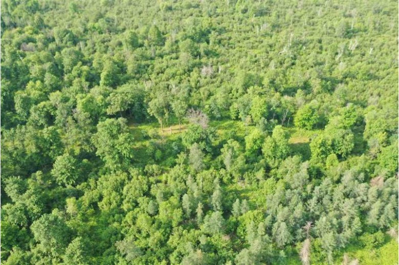 117 ACRES Hwy 21, Friendship, WI by Whitetail Dreams Real Estate Llc $159,900
