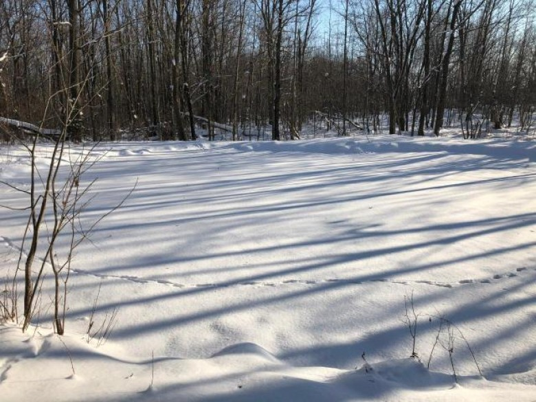 TBD Bungaloo Rd, Halsey, WI by Clc Realty, Llc. $299,900