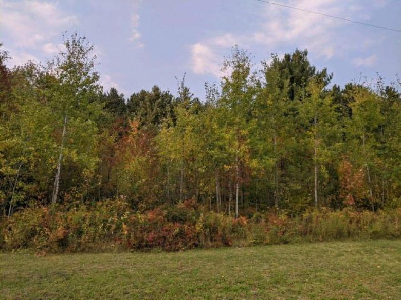 ON Trailer Ln, Worcester, WI by Birchland Realty, Inc. - Phillips $32,900