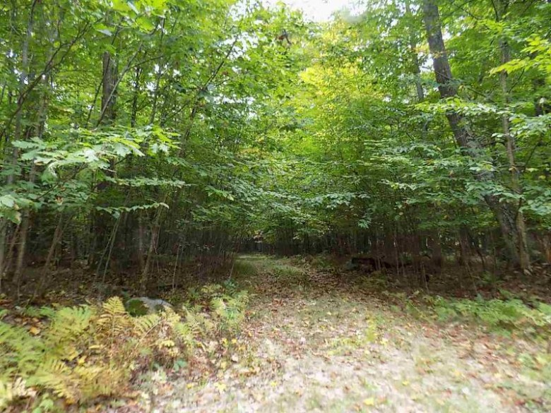 6754 Buck Run Trail Wabeno, WI 54566-0000 by RE/MAX North Winds Realty, LLC $74,000
