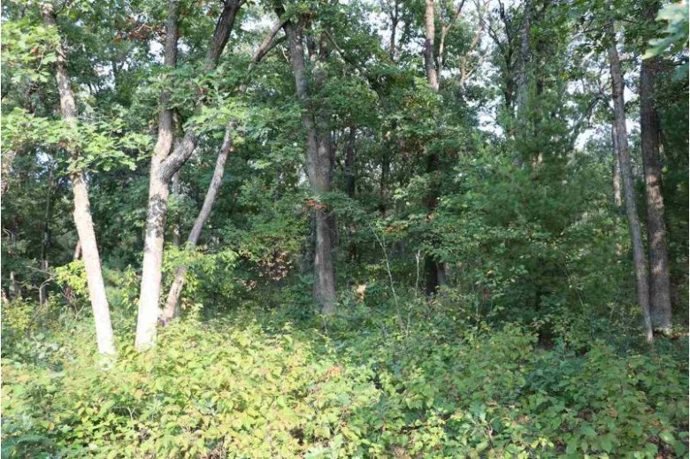 Hwy Ff Coloma, WI 54930 by Century 21 Affiliated $163,000