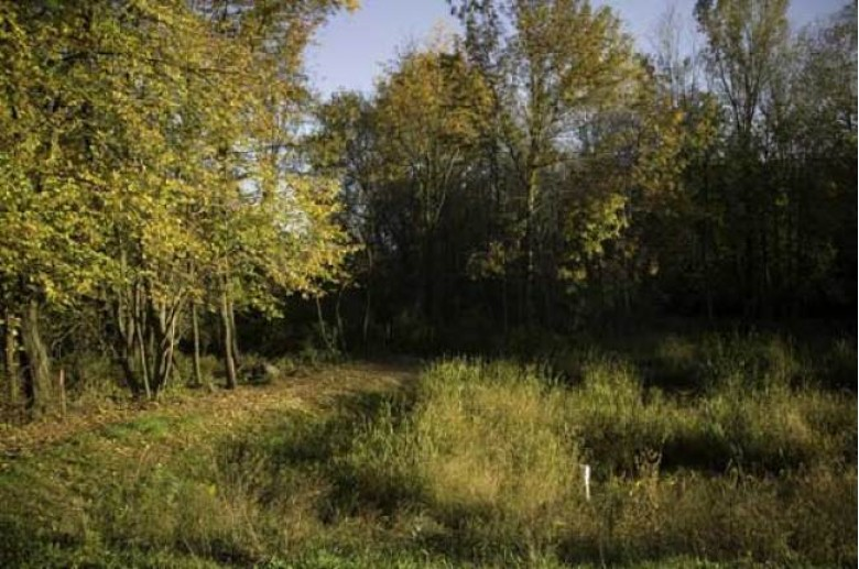 L182 Bluestem Tr DeForest, WI 53532 by First Weber Real Estate $174,900