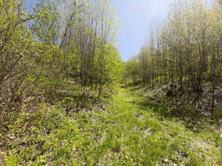 00 County Road E, Warrens, WI by First Weber Real Estate $150,000