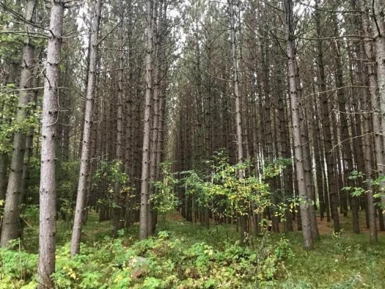 9379 Treeland Dr, Argonne, WI by Homeland Realty Wi Llc $98,500
