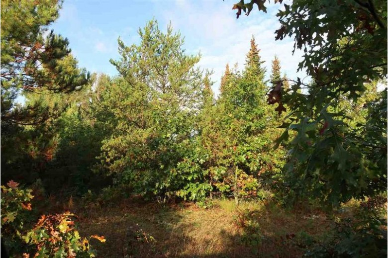 Bighorn Drive Wautoma, WI 54982 by Keller Williams Fox Cities $119,750