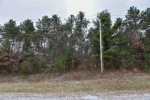 15th Avenue, Wild Rose, WI by Real Pro $29,900