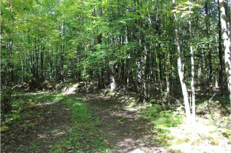 N6437 Town Hall Road Merrill, WI 54452 by Park City Realty $119,900