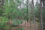 1.6 ACRES Lone Pine Lane, Mosinee, WI by Coldwell Banker Action $34,900