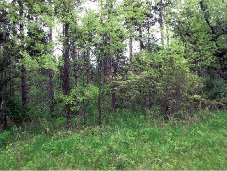 Hwy F Lot 3 Wautoma, WI 54982 by First Choice Realty, Inc. $85,000