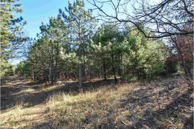 24th Avenue Wild Rose, WI 54984 by Real Pro $49,900