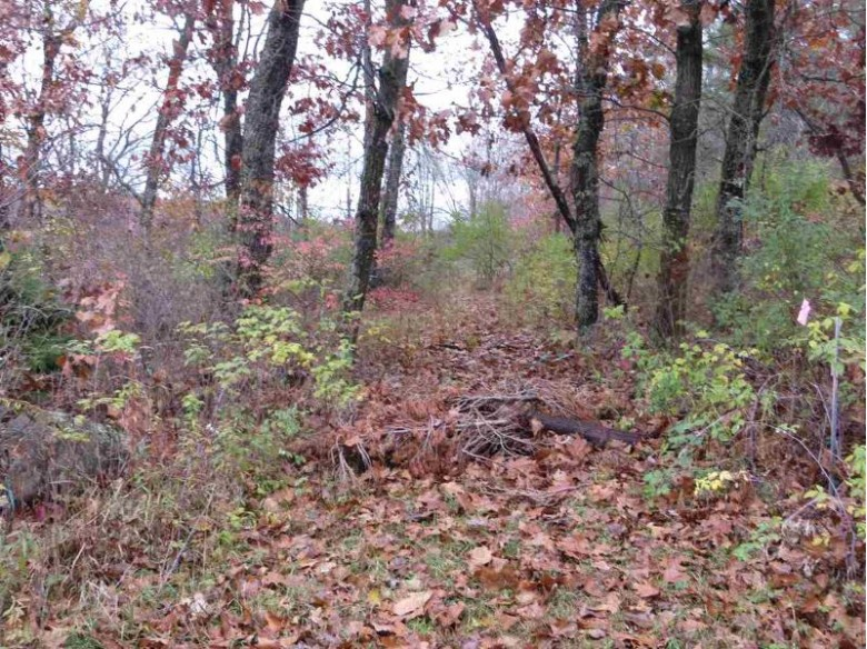 LOT 2 CSM 6232 4th Ave, Oxford, WI by Robinson Realty Company $69,000
