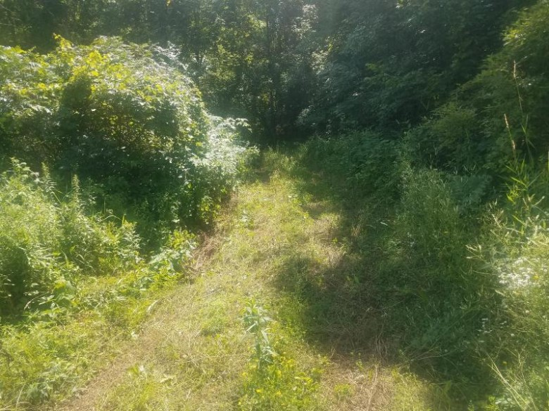 0 Hwy 54 Melrose, WI 54642 by Weiss Realty, Llc $25,000