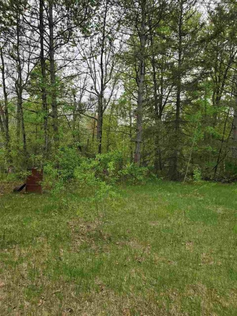 Peninsula Court Neshkoro, WI 54960 by First Weber Real Estate $49,900
