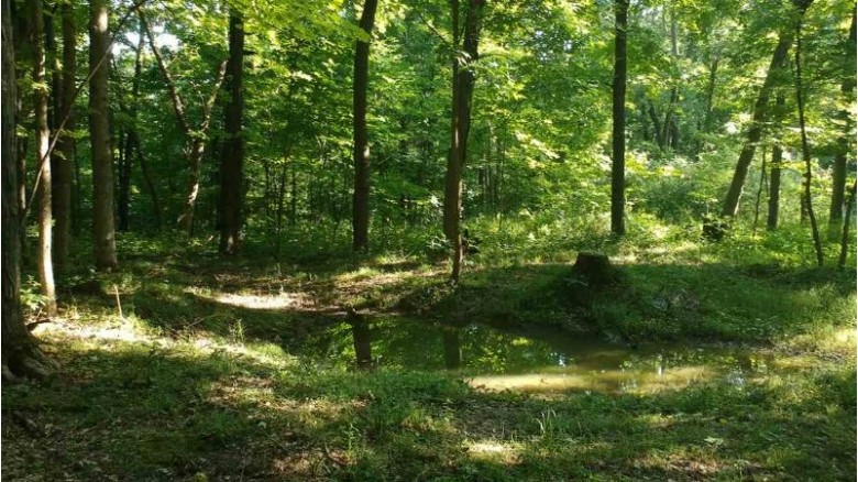 80 County Road Ss, Viroqua, WI by Century 21 Affiliated $299,900