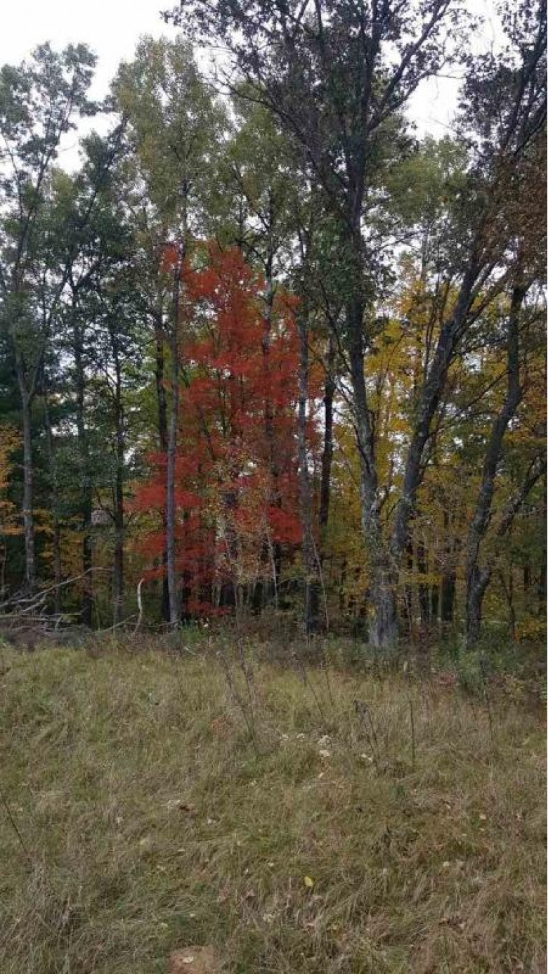 N7607 S 9th Avenue, New Lisbon, WI by First Weber Real Estate $21,000