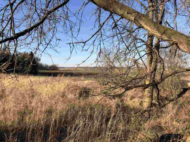 5 AC Duborg Rd Columbus, WI 53925 by Tandem Realty Group $160,000