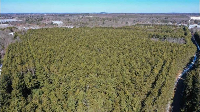 31 ACRES State Highway 73 Plainfield, WI 54966 by Nexthome Partners $140,000