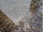 N15066 Bolander Landing Road, Amberg, WI by Hanson Realty, Inc. $54,900