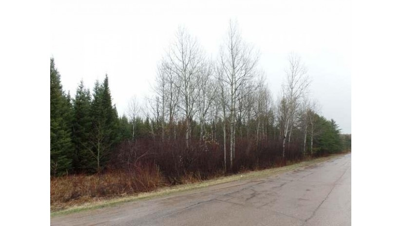 38.25 Ac Pine Ave Merrill, WI 54452 by Coldwell Banker Action $69,900