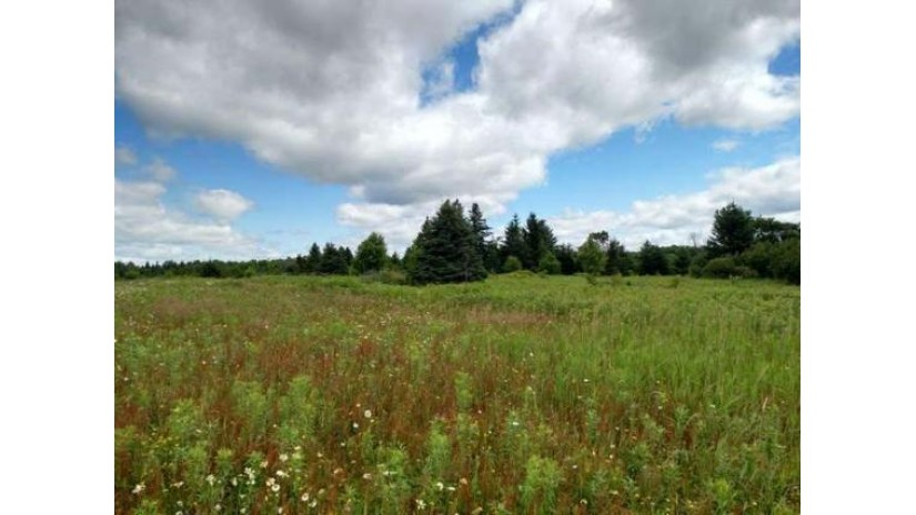 On Silver Creek Rd Westboro, WI 54490 by Re/Max New Horizons Realty Llc $57,900
