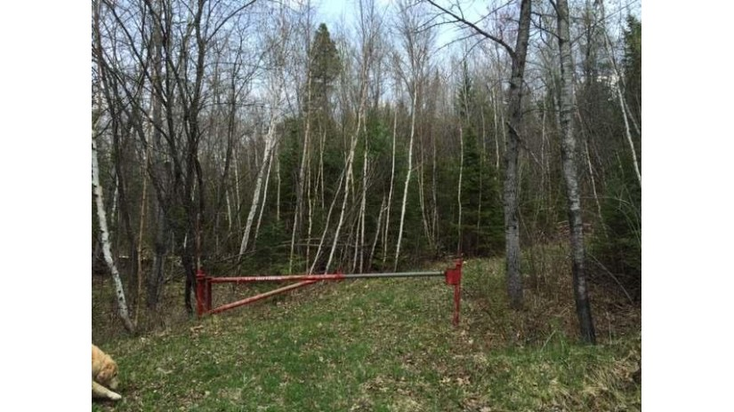 Near Hwy 64 Wolf River, WI 54491 by Signature Realty, Inc. $85,000