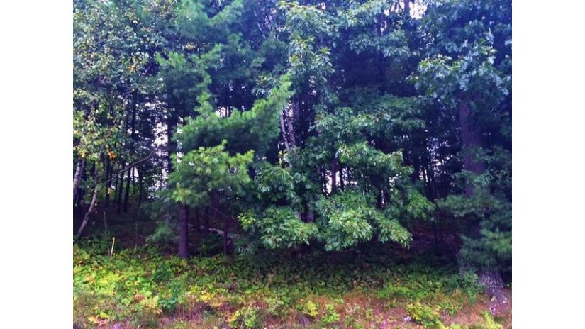 Lot 4 Theiler Dr Tomahawk, WI 54487 by Northwoods Community Realty, Llc $16,900
