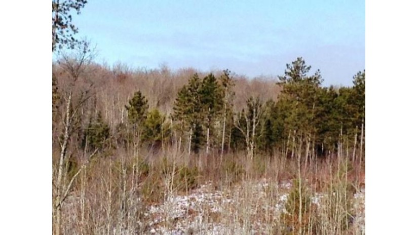 On Hwy 32 Riverview, WI 54149 by Boss Realty Llc $32,900