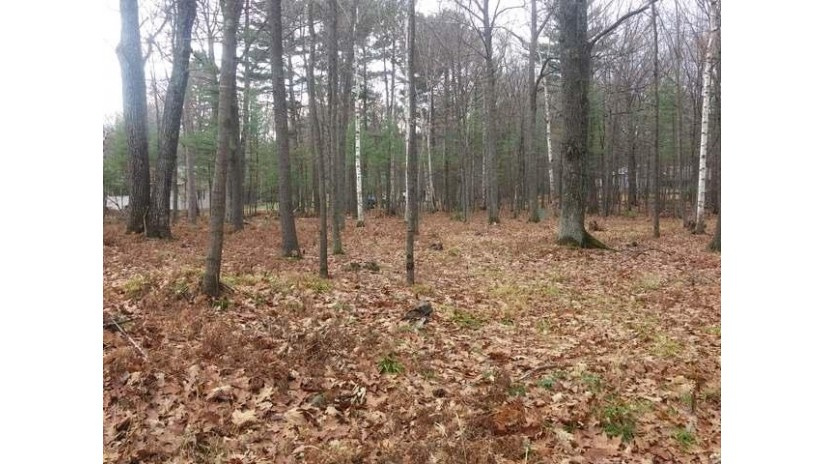 65 Cedar Dr Lot Lincoln, WI 54521 by Coldwell Banker Mulleady-Er $11,900