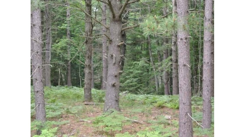 Lot 12 Tranquility Tr Hazelhurst, WI 54531 by Redman Realty Group, Llc $14,900