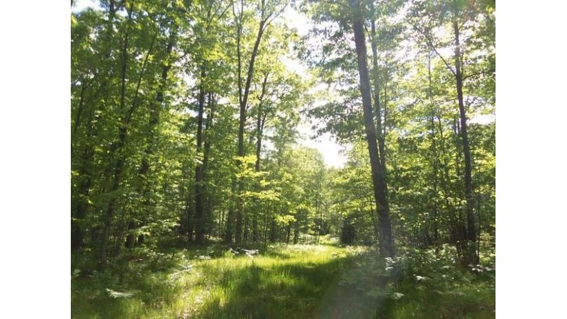 52 Acres Lower Kaubashine Rd Minocqua, WI 54548 by Redman Realty Group, Llc $150,000