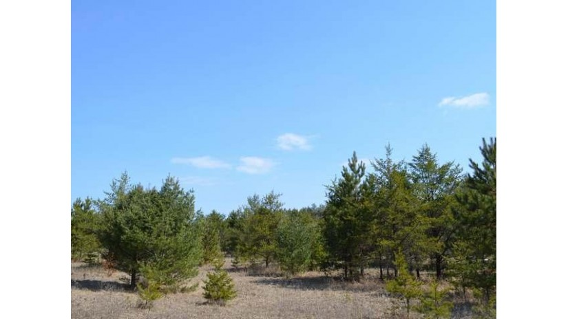 On Mohawk Dr E Tomahawk, WI 54487 by Woodland Lakes Realty, Llc $39,900