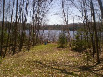 On Maiden Lake Rd, Riverview, WI 54149