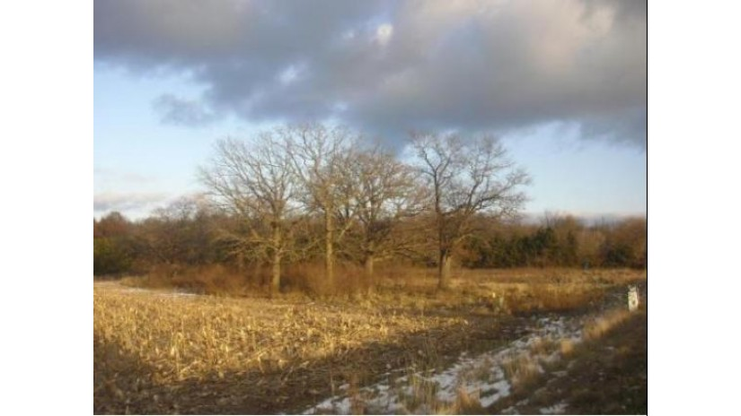 FRONTAGE Road Farmington, WI 54981 by Shambeau and Thern Real Estate, LLC $54,900