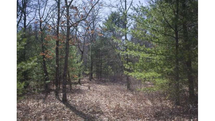 L108 Timber Shores Strongs Prairie, WI 54613 by Landman Realty Llc $19,900