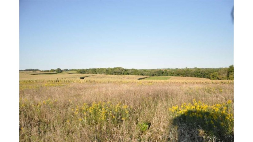 0 County Road Z Blue Mounds, WI 53517 by Realty Executives Cooper Spransy $800,000