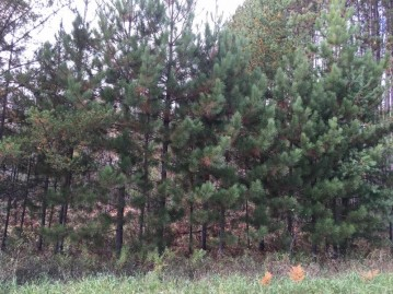 Lt11 Butterfield Ln, Beecher, WI 54156