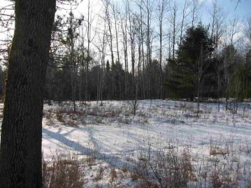 12867 HWY 32/64, Mountain, WI 54149-9535
